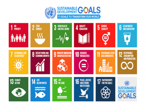 The Sustainable Development Goals -mini gowi-